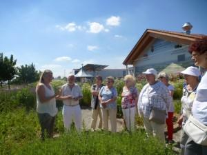 Viele interesseante  Informationen gab es im Kräutergarten